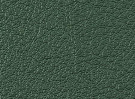 Amazon leather