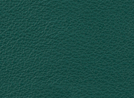Green-Gray leather