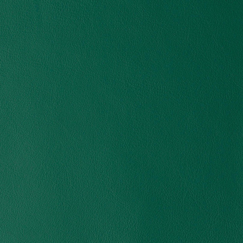 LAGUNA GREEN RAY 08658